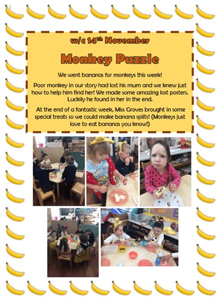 monkey-puzzle-r-copy