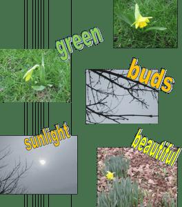 year-2-spring-copy